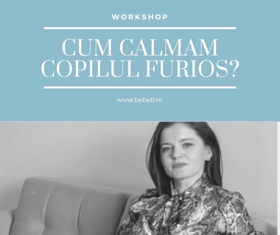 Workshop: Cum calmam copilul furios?
